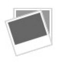 IDROPULITRICE MOD.142 ELETTROPOMPA TSS BLUE CLEAN CLASSIC 1400W  A. REVERBERI