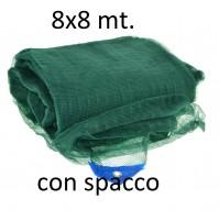 TELO RETE RACCOLTA OLIVE 8×8 mt. High-Quality SPACCO CENTRALE OCCHIELLATA